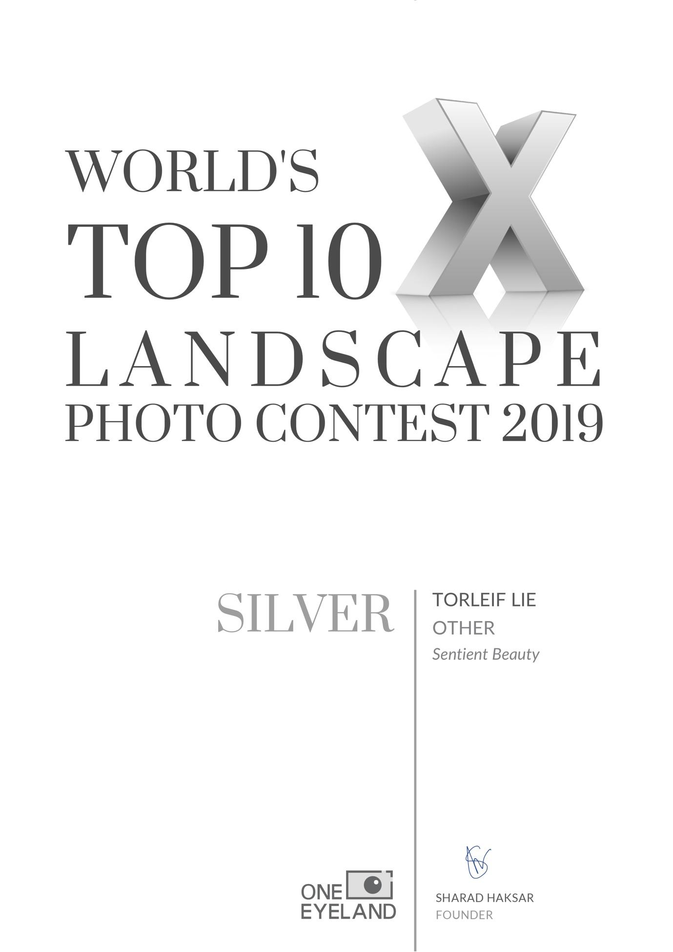 Sentient-Beauty-silver-landscape-other--2019