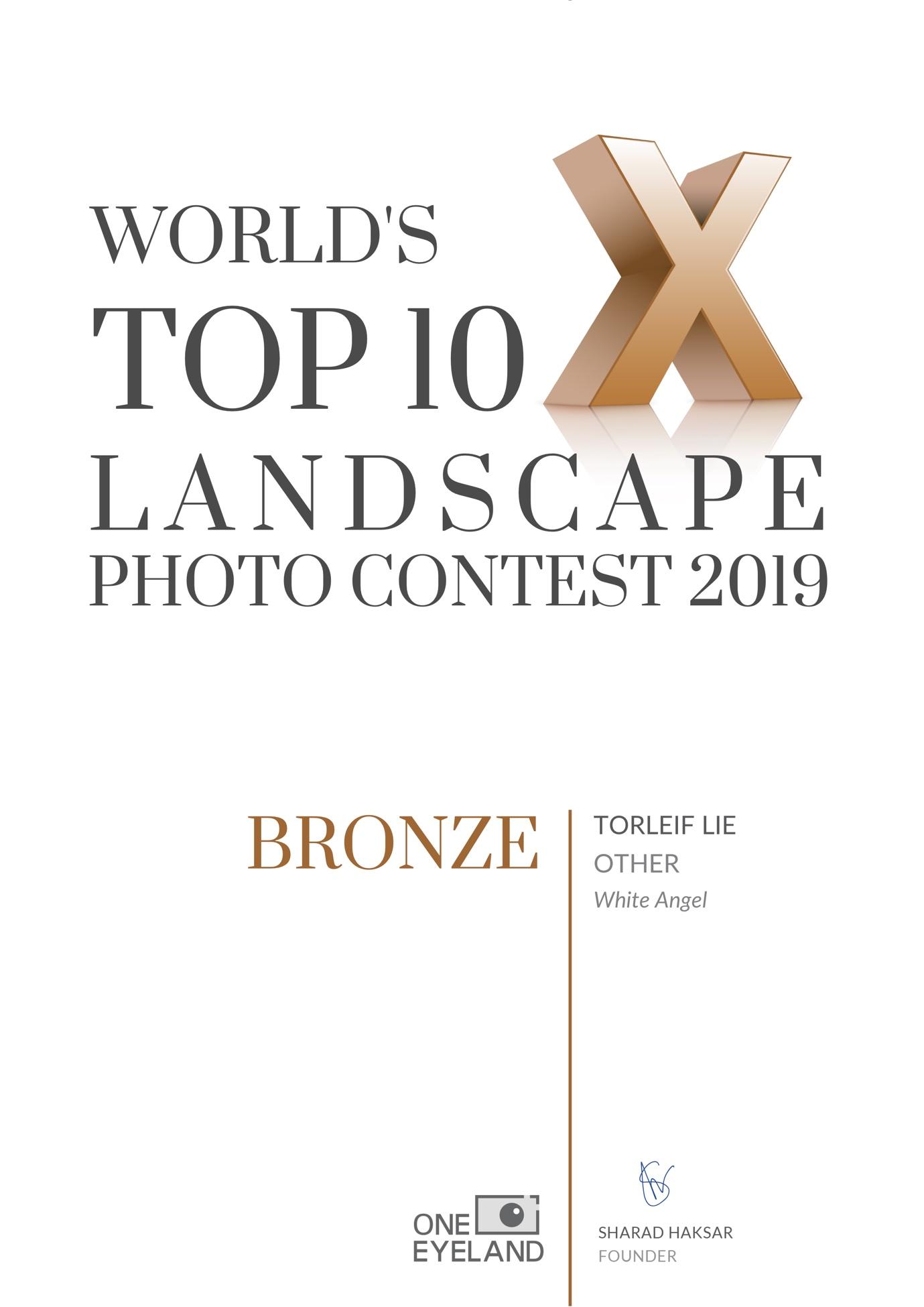 White-Angel-bronze-landscape-other-2019