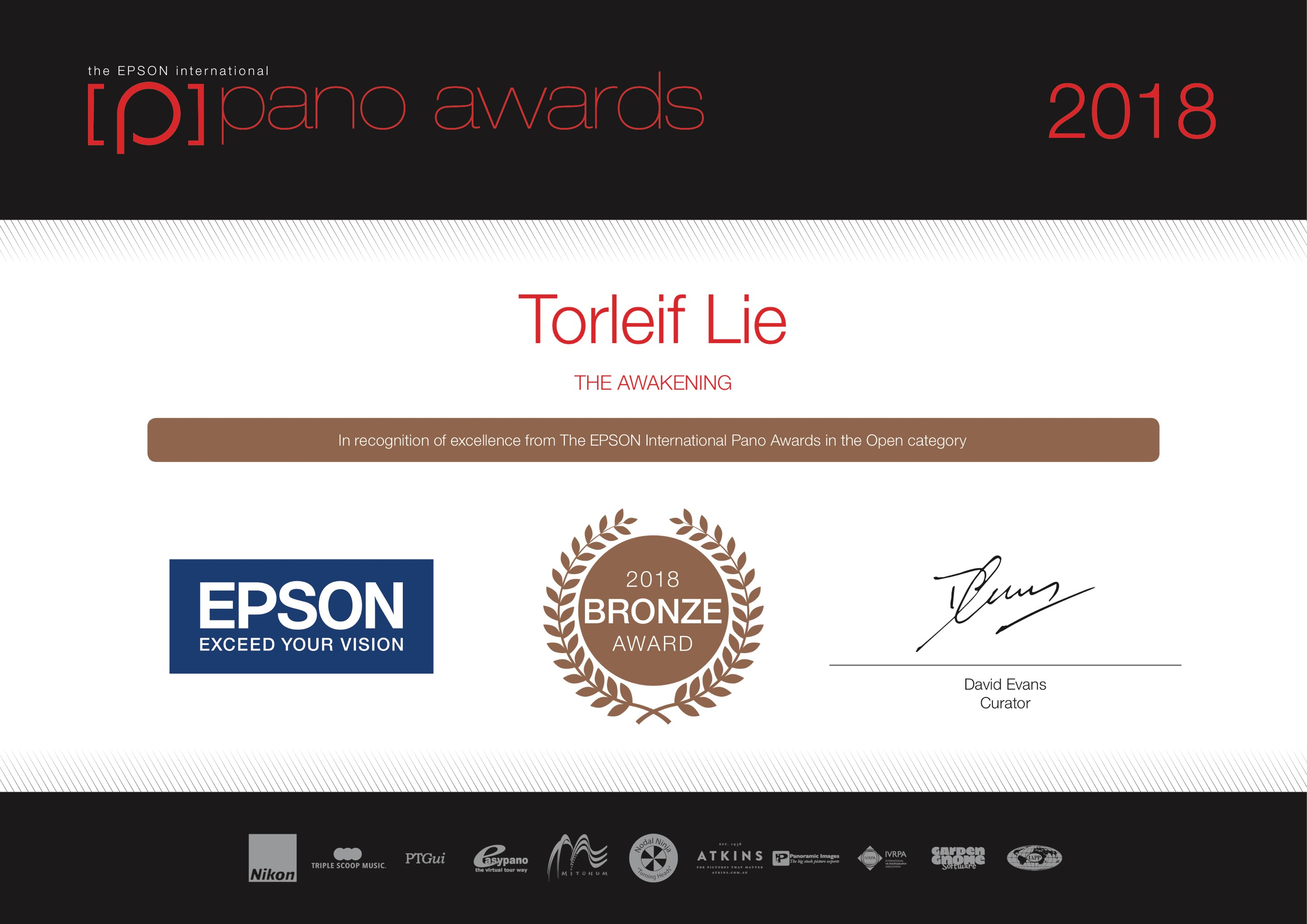 2018-Epson-Pano-Awards-Open-Bronze-The-Awakening