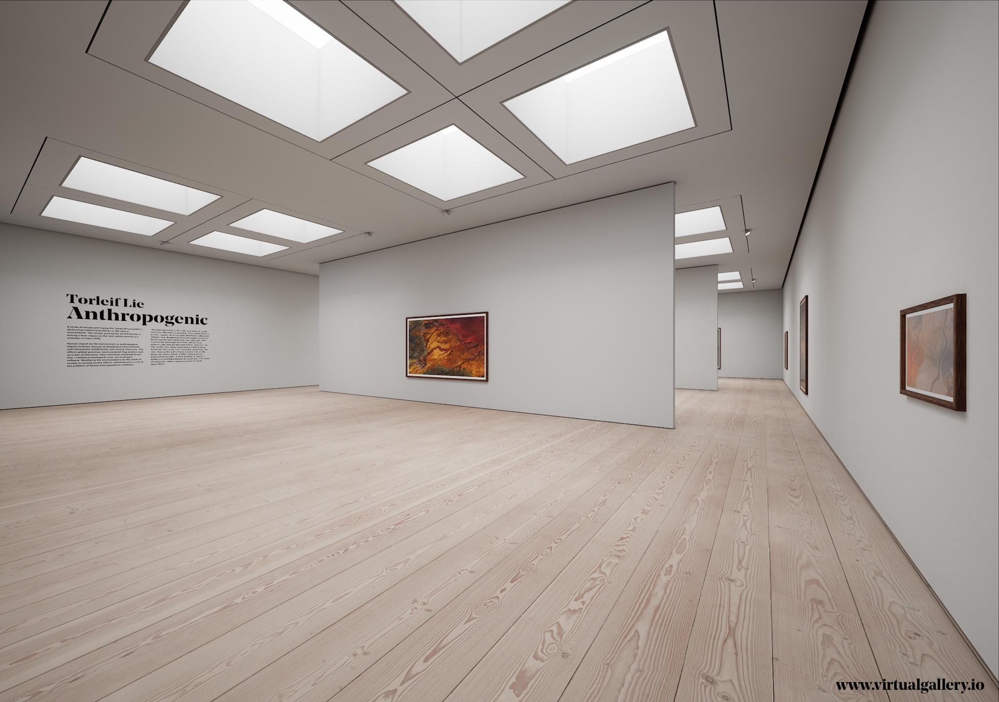 Virtual Gallery Reimagined